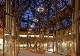 Job: Education Officer,Oxford University Museum of Natural History