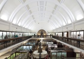 Horniman Museum announces Climate and Ecology Manifesto